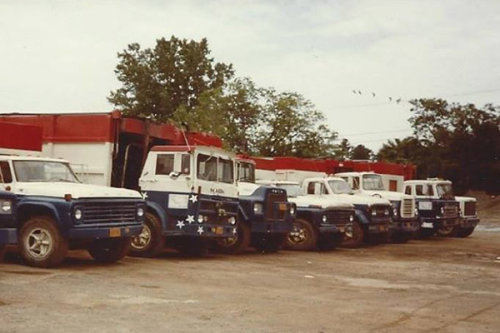 Old Truck Line-Up
